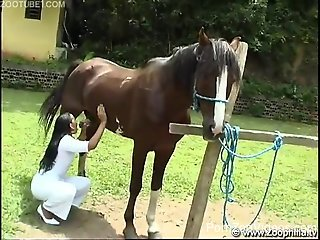 Latina woman appears working on a big horse dick in brutal zoo...